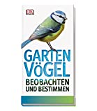 Gartenvögel beobachten und bestimmen