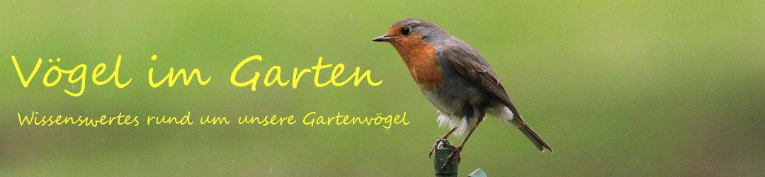 Voegel-im-Garten.de